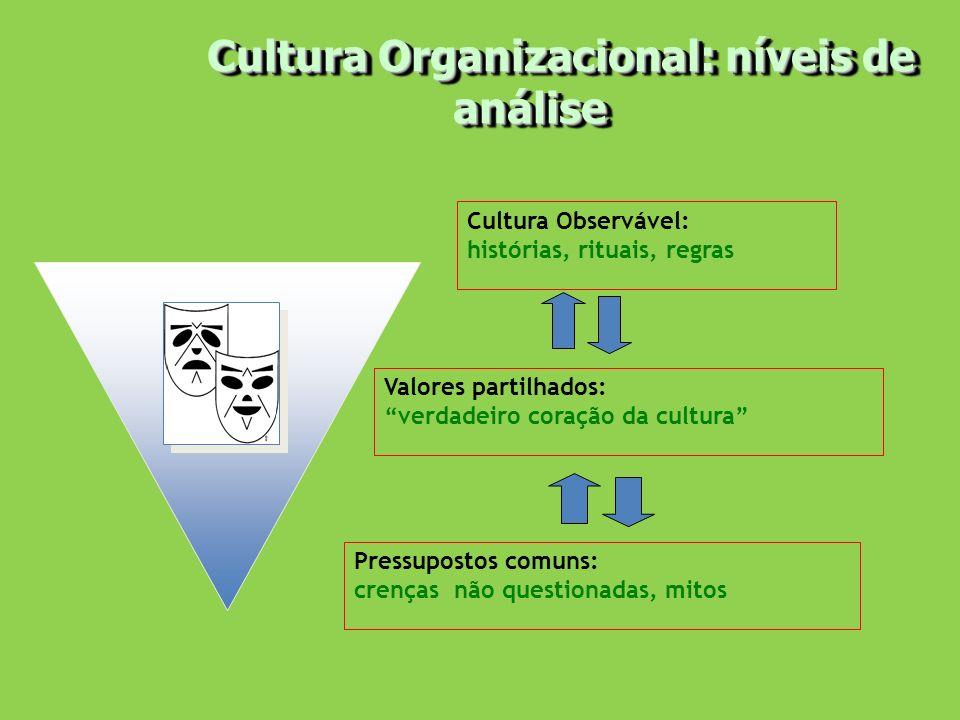 Cultura Organizacional: níveis de análise Cultura Organizacional: níveis de análise Cultura Observável: histórias, rituais, regras Valores partilhados