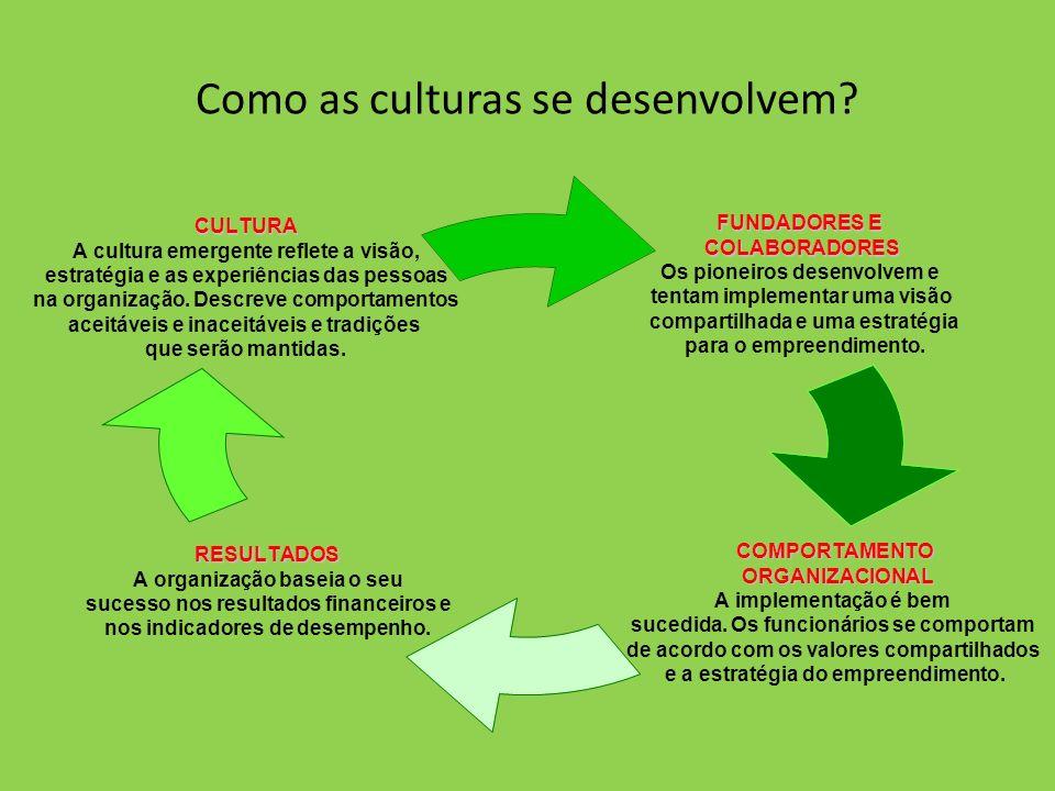 Como as culturas se desenvolvem? FUNDADORES E COLABORADORES Os pioneiros desenvolvem e tentam implementar uma visão compartilhada e uma estratégia par