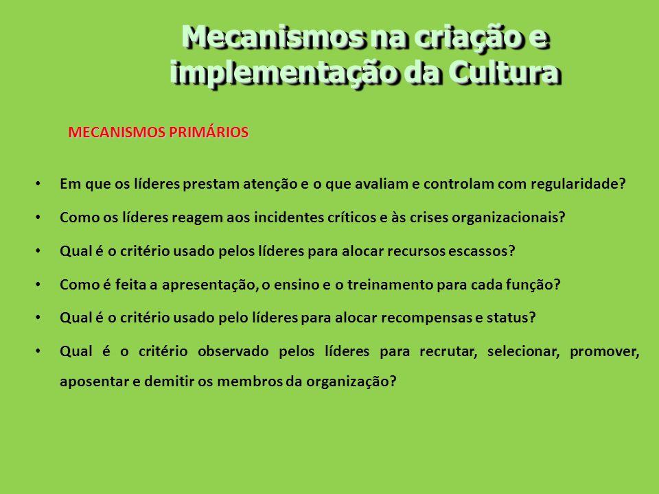 Mecanismos na criação e implementação da Cultura MECANISMOS PRIMÁRIOS Em que os líderes prestam atenção e o que avaliam e controlam com regularidade?