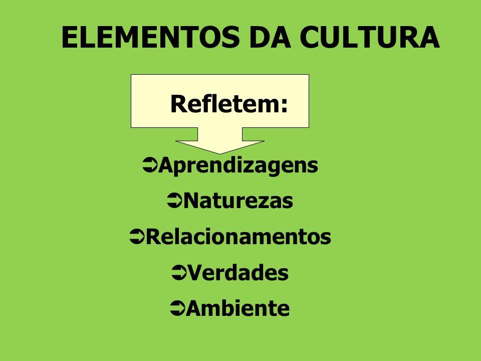 ELEMENTOS DA CULTURA Refletem: Aprendizagens Naturezas Relacionamentos Verdades Ambiente