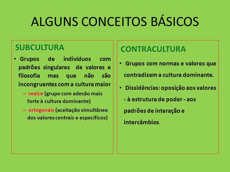 ALGUNS CONCEITOS BÁSICOS SUBCULTURA SUBCULTURA Grupos de indivíduos com padrões singulares de valores e filosofia mas que não são incongruentes com a