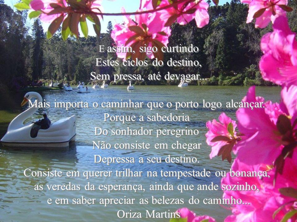 As perdas não lamentemos, pois as trilhas que vivemos renovam-se a cada era:..se no outono a folha cai, uma outra, é certo, vai, renascer na primavera
