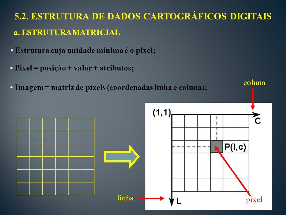 5.2.ESTRUTURA DE DADOS CARTOGRÁFICOS DIGITAIS a.
