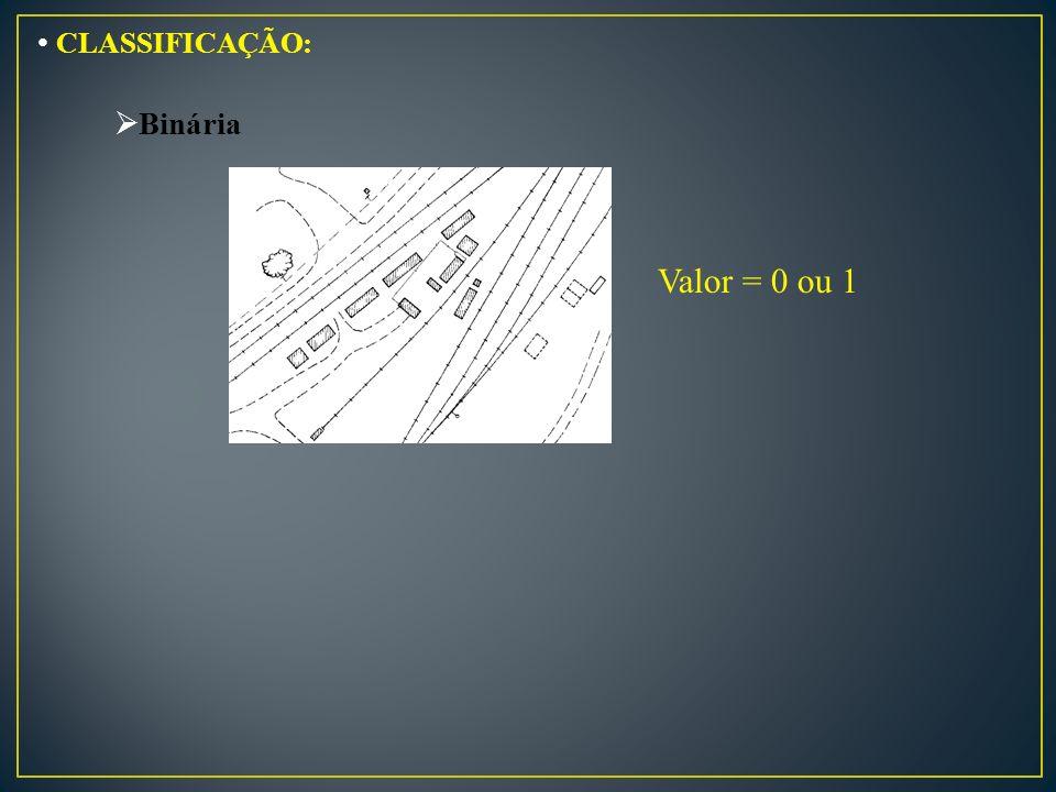 CLASSIFICAÇÃO: Binária Valor = 0 ou 1