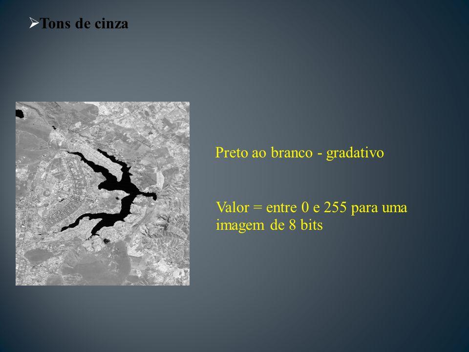 Tons de cinza Valor = entre 0 e 255 para uma imagem de 8 bits Preto ao branco - gradativo