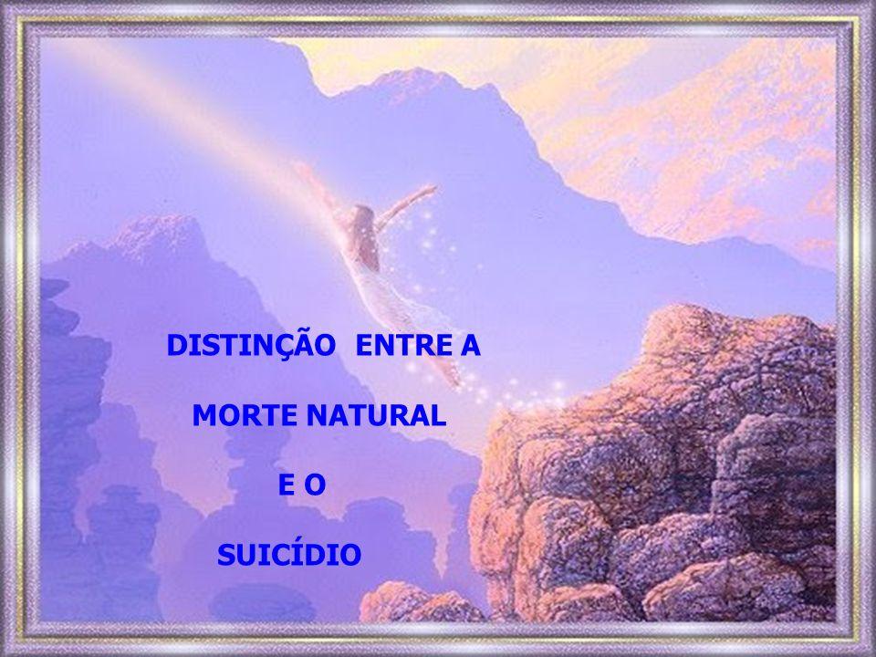 DISTINÇÃO ENTRE A MORTE NATURAL E O SUICÍDIO
