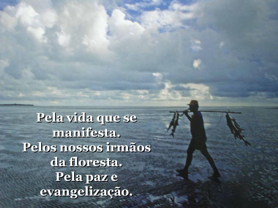 Amazônia, levamos ao mundo. O clamor que se faz tão profundo. Por justiça, trabalho e pão. Amazônia, levamos ao mundo. O clamor que se faz tão profund