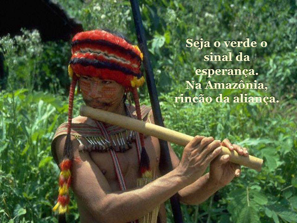 Seja o verde o sinal da esperança.Na Amazônia, rincão da aliança.