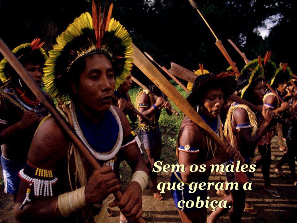 Seja o verde o sinal da esperança. Na Amazônia, rincão da aliança. Seja o verde o sinal da esperança. Na Amazônia, rincão da aliança.