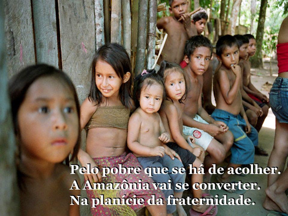 Pelo pobre que se há de acolher.A Amazônia vai se converter.