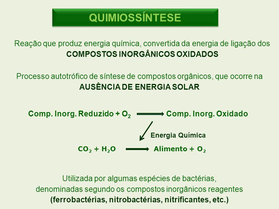 CO 2 + H 2 O Alimento + O 2 Comp. Inorg. Reduzido + O 2 Comp. Inorg. Oxidado Reação que produz energia química, convertida da energia de ligação dos C