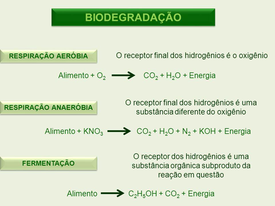 Alimento + O 2 CO 2 + H 2 O + Energia Alimento + KNO 3 CO 2 + H 2 O + N 2 + KOH + Energia Alimento C 2 H 5 OH + CO 2 + Energia BIODEGRADAÇÃO RESPIRAÇÃ