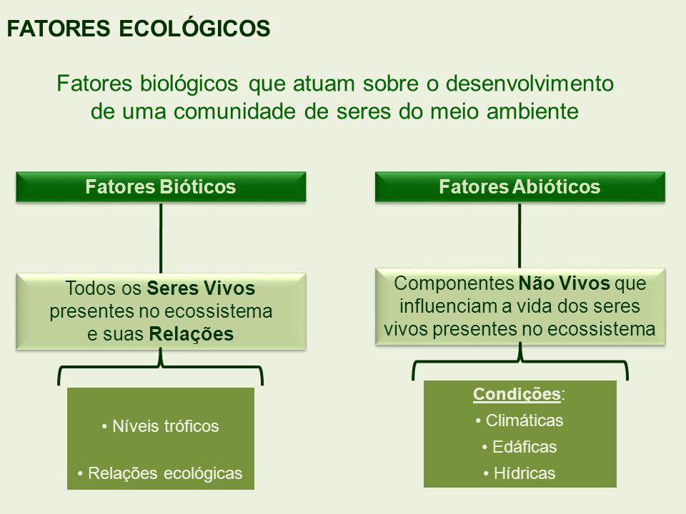 Fatores biológicos que atuam sobre o desenvolvimento de uma comunidade de seres do meio ambiente FATORES ECOLÓGICOS Fatores Bióticos Fatores Abióticos