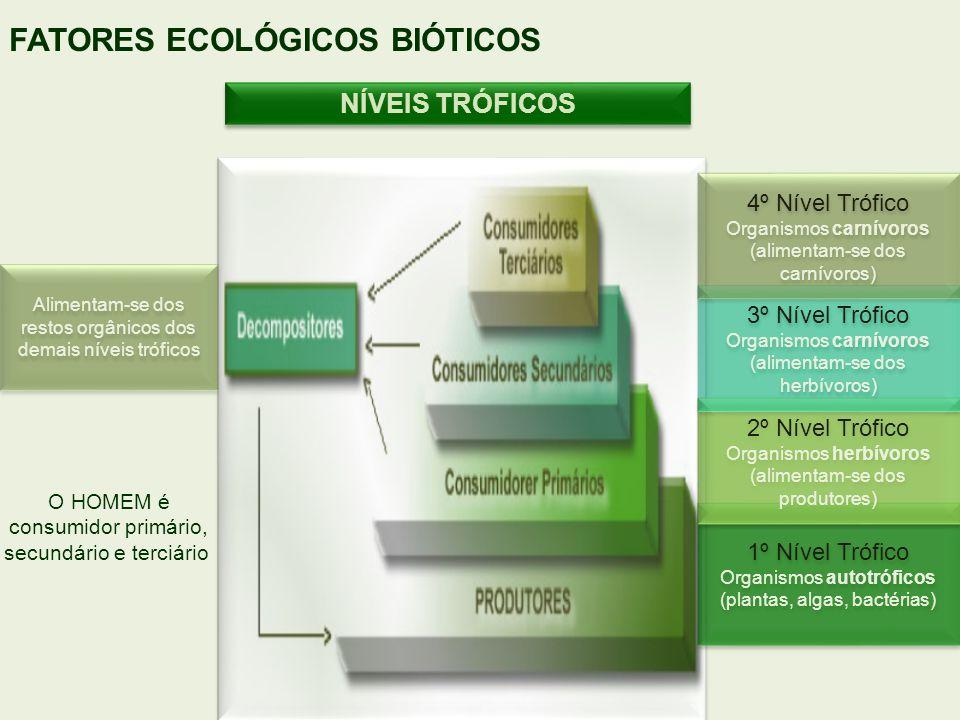 NÍVEIS TRÓFICOS FATORES ECOLÓGICOS BIÓTICOS 1º Nível Trófico Organismos autotróficos (plantas, algas, bactérias) 1º Nível Trófico Organismos autotrófi