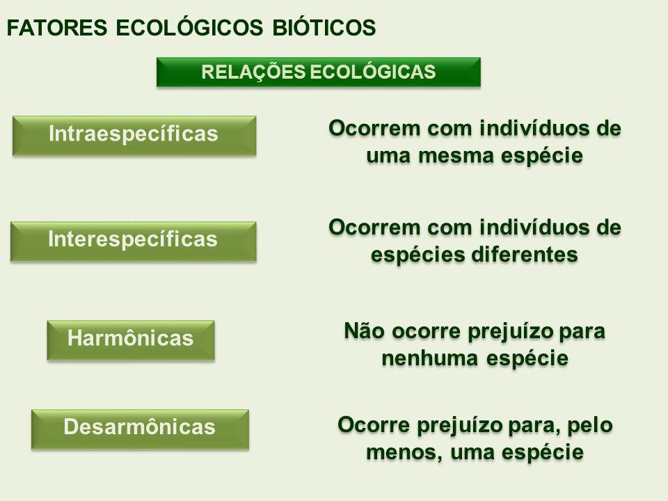 RELAÇÕES ECOLÓGICAS FATORES ECOLÓGICOS BIÓTICOS Intraespecíficas Interespecíficas Harmônicas Desarmônicas Ocorrem com indivíduos de uma mesma espécie