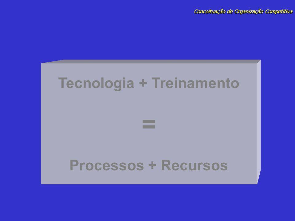 Conceituação de Organização Competitiva Tecnologia + Treinamento = Processos + Recursos