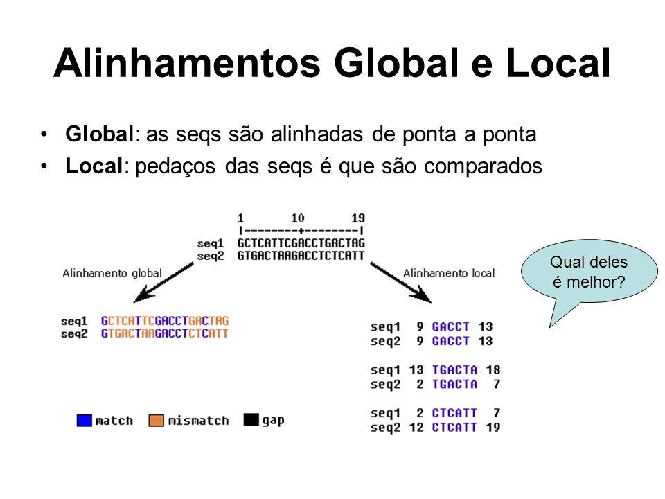 Alinhamentos Global e Local Global: as seqs são alinhadas de ponta a ponta Local: pedaços das seqs é que são comparados Qual deles é melhor?