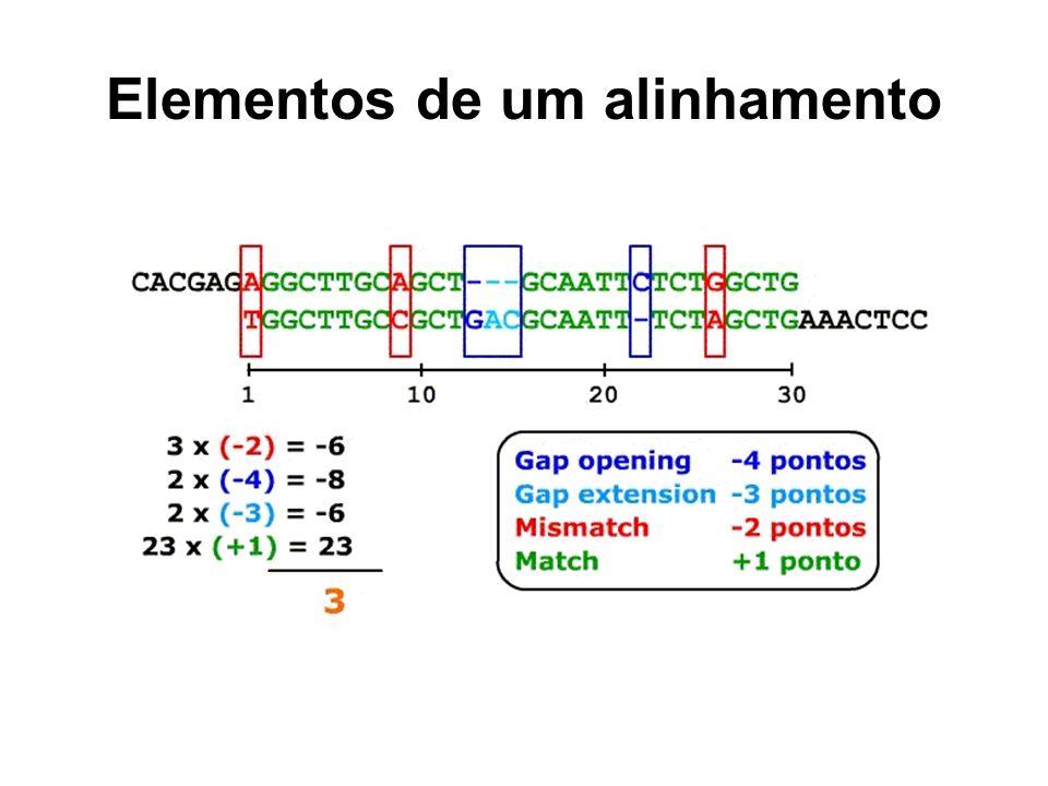Matrizes de substituição Definem pontuação específica específica para a troca entre símbolos Qual a diferença entre as duas matrizes ao lado Modelos de substituição –Jukes-Cantor X Kimura ACGT A1-2 C 1 G 1 T 1 ACGT A1 -2 C 1 G -21 T -21