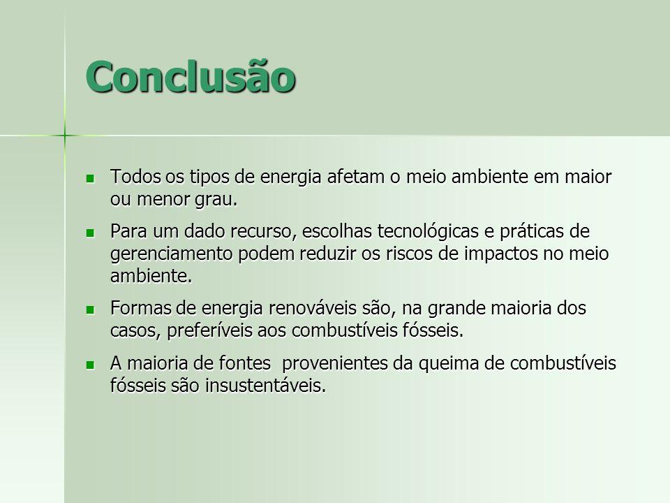 Conclusão Todos os tipos de energia afetam o meio ambiente em maior ou menor grau. Todos os tipos de energia afetam o meio ambiente em maior ou menor