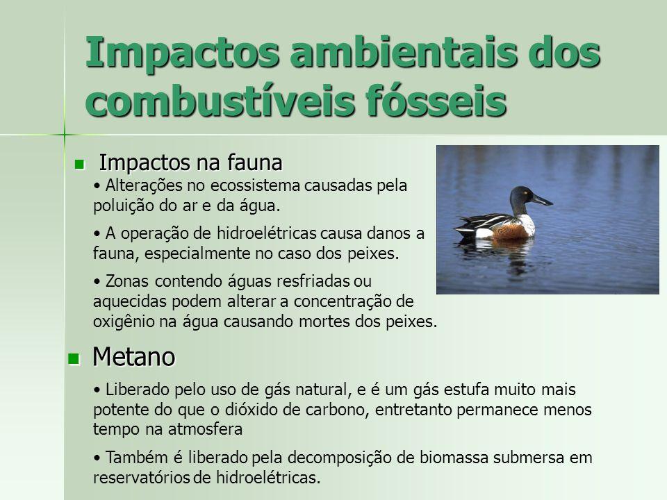 Impactos ambientais dos combustíveis fósseis Impactos na fauna Impactos na fauna Metano Metano Liberado pelo uso de gás natural, e é um gás estufa mui