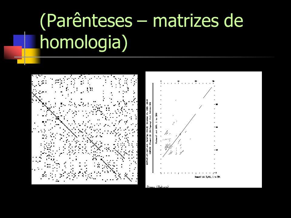 (Parênteses – matrizes de homologia)
