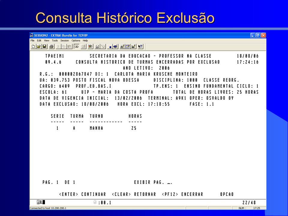 Consulta Histórico Exclusão