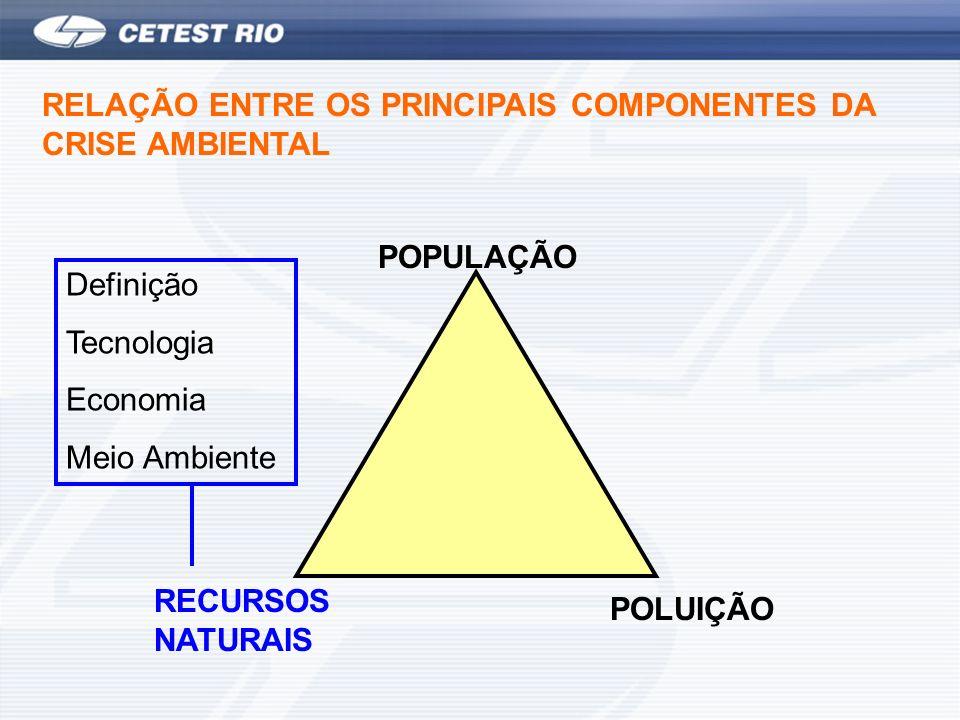 RECURSOS NATURAIS POLUIÇÃO POPULAÇÃO RELAÇÃO ENTRE OS PRINCIPAIS COMPONENTES DA CRISE AMBIENTAL Definição Tecnologia Economia Meio Ambiente