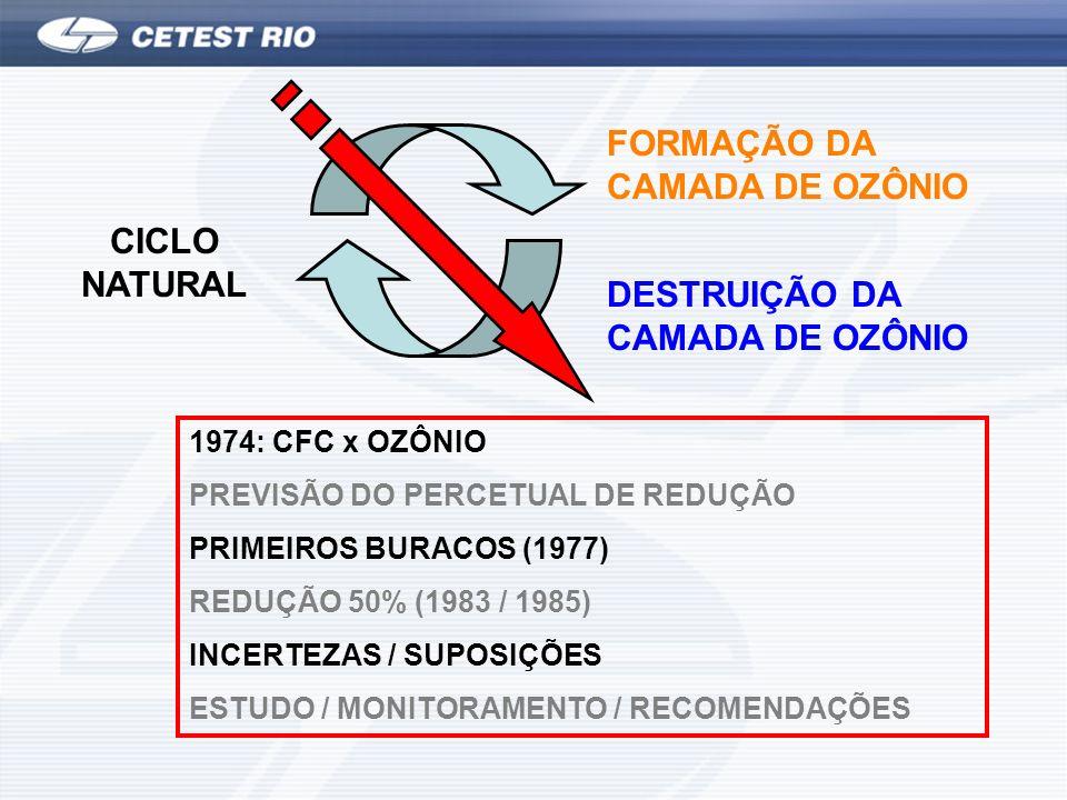 FORMAÇÃO DA CAMADA DE OZÔNIO DESTRUIÇÃO DA CAMADA DE OZÔNIO CICLO NATURAL 1974: CFC x OZÔNIO PREVISÃO DO PERCETUAL DE REDUÇÃO PRIMEIROS BURACOS (1977)
