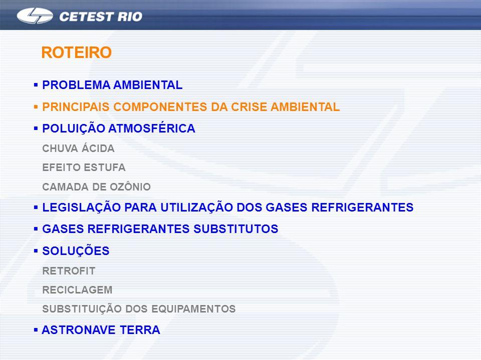PROBLEMA AMBIENTAL PRINCIPAIS COMPONENTES DA CRISE AMBIENTAL POLUIÇÃO ATMOSFÉRICA CHUVA ÁCIDA EFEITO ESTUFA CAMADA DE OZÔNIO LEGISLAÇÃO PARA UTILIZAÇÃ