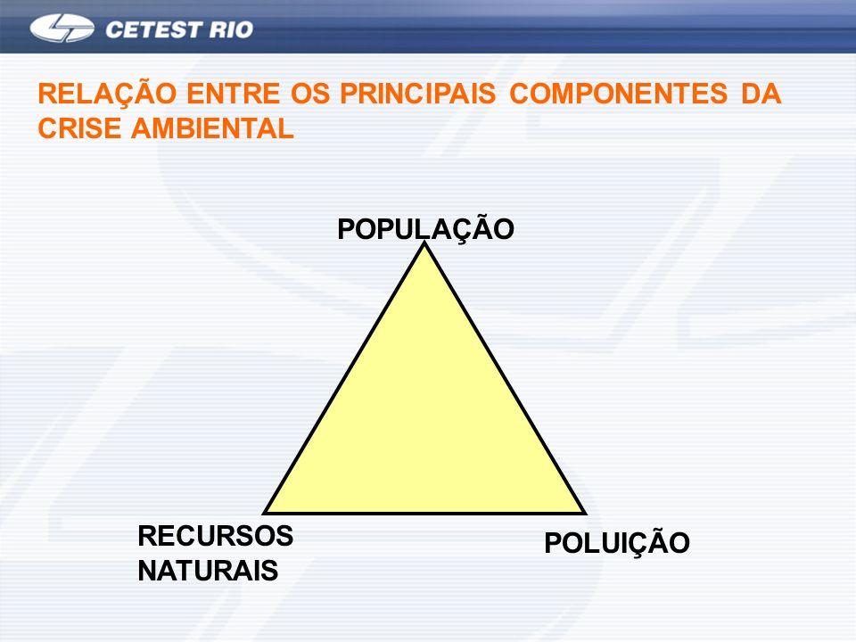 RECURSOS NATURAIS POLUIÇÃO POPULAÇÃO RELAÇÃO ENTRE OS PRINCIPAIS COMPONENTES DA CRISE AMBIENTAL
