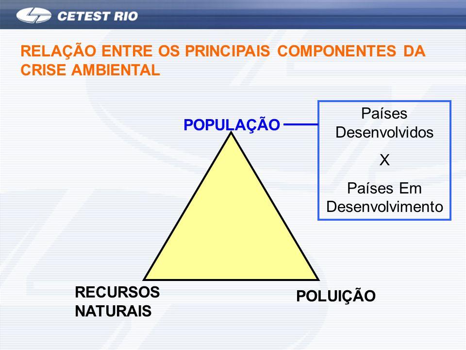 RECURSOS NATURAIS POLUIÇÃO POPULAÇÃO RELAÇÃO ENTRE OS PRINCIPAIS COMPONENTES DA CRISE AMBIENTAL Países Desenvolvidos X Países Em Desenvolvimento