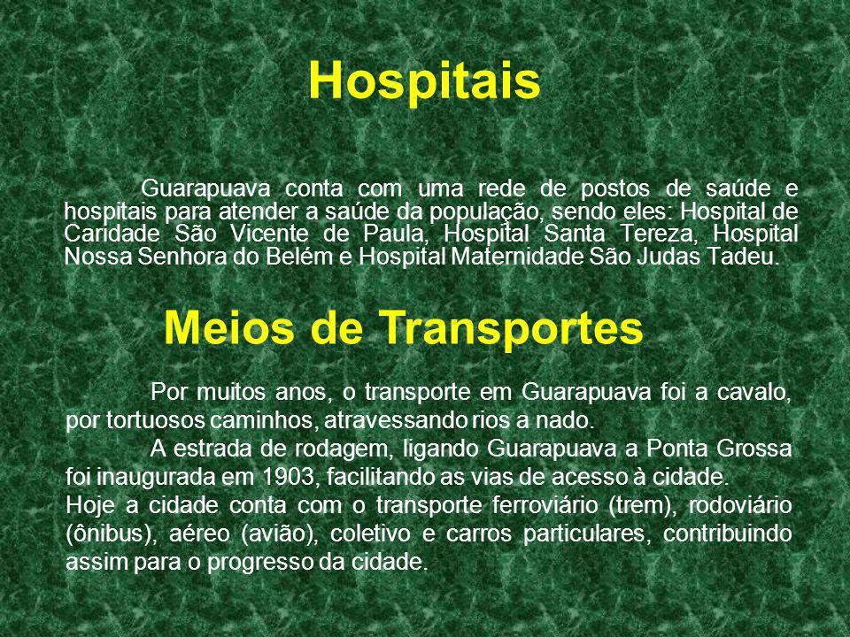 Hospitais Guarapuava conta com uma rede de postos de saúde e hospitais para atender a saúde da população, sendo eles: Hospital de Caridade São Vicente