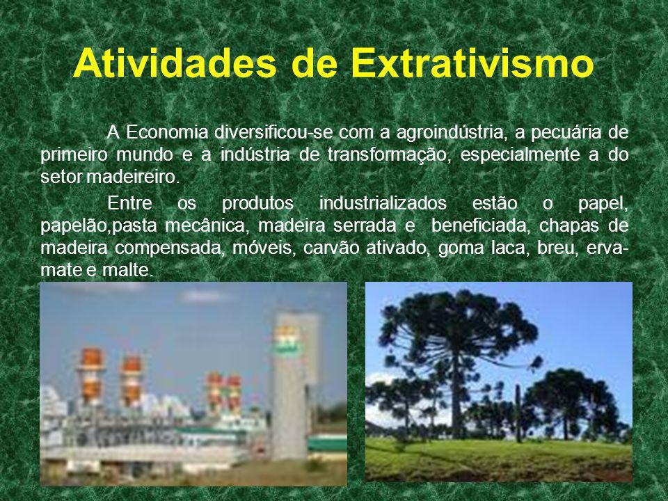 Atividades de Extrativismo A Economia diversificou-se com a agroindústria, a pecuária de primeiro mundo e a indústria de transformação, especialmente