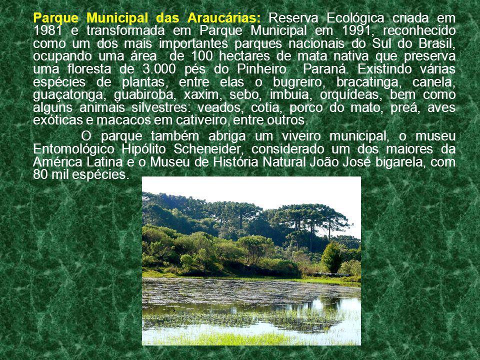 Parque Municipal das Araucárias: Reserva Ecológica criada em 1981 e transformada em Parque Municipal em 1991, reconhecido como um dos mais importantes