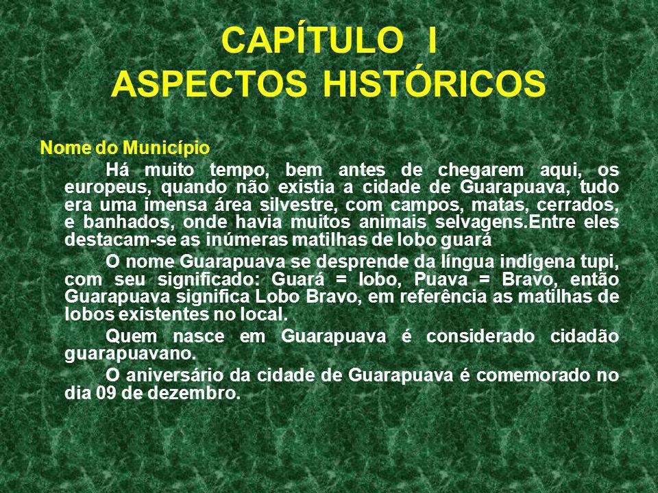 CAPÍTULO I ASPECTOS HISTÓRICOS Nome do Município Há muito tempo, bem antes de chegarem aqui, os europeus, quando não existia a cidade de Guarapuava, t