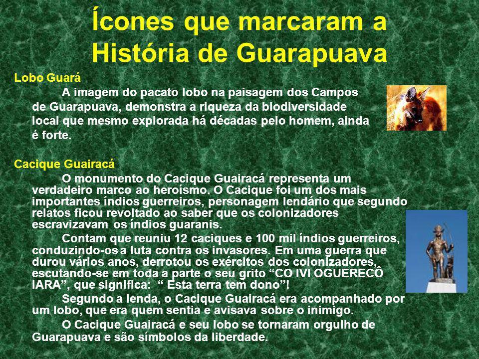 Ícones que marcaram a História de Guarapuava Lobo Guará A imagem do pacato lobo na paisagem dos Campos de Guarapuava, demonstra a riqueza da biodivers