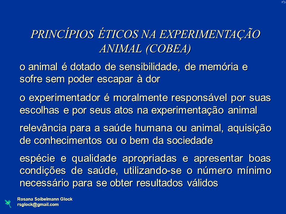 Rosana Soibelmann Glock rsglock@gmail.com PRINCÍPIOS ÉTICOS NA EXPERIMENTAÇÃO ANIMAL (COBEA) o animal é dotado de sensibilidade, de memória e sofre se