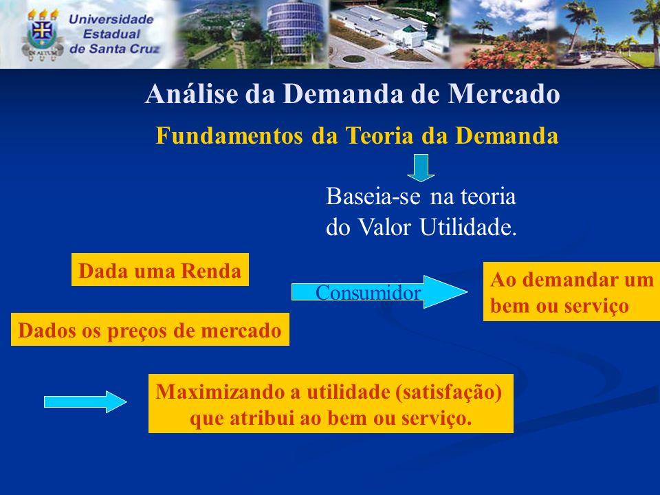 Análise da Demanda de Mercado Fundamentos da Teoria da Demanda Baseia-se na teoria do Valor Utilidade. Dada uma Renda Dados os preços de mercado Consu