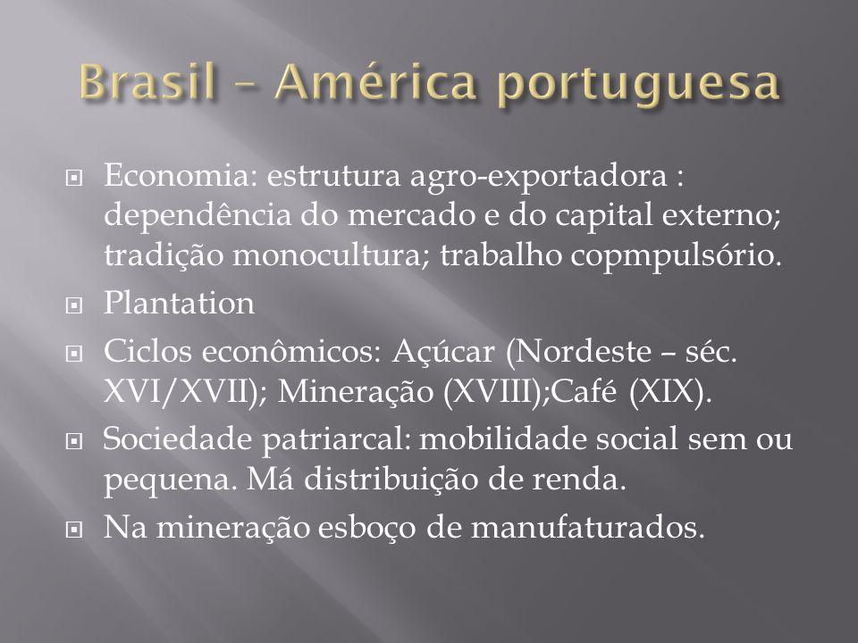 Economia: estrutura agro-exportadora : dependência do mercado e do capital externo; tradição monocultura; trabalho copmpulsório. Plantation Ciclos eco