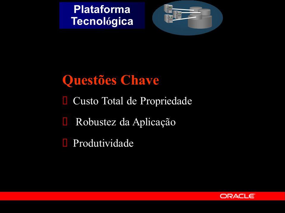 Questões Chave Custo Total de Propriedade Robustez da Aplicação Produtividade Plataforma Tecnol ó gica