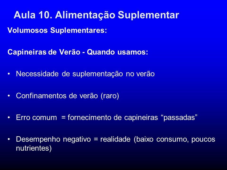 Aula 10. Alimentação Suplementar Volumosos Suplementares: Capineiras de Verão - Quando usamos: Necessidade de suplementação no verão Confinamentos de