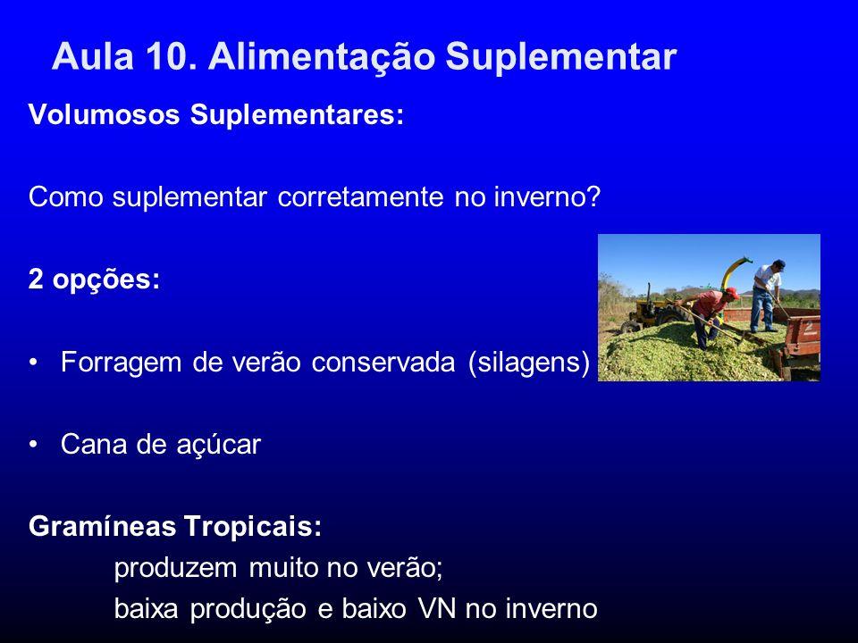 Aula 10. Alimentação Suplementar Volumosos Suplementares: Como suplementar corretamente no inverno? 2 opções: Forragem de verão conservada (silagens)