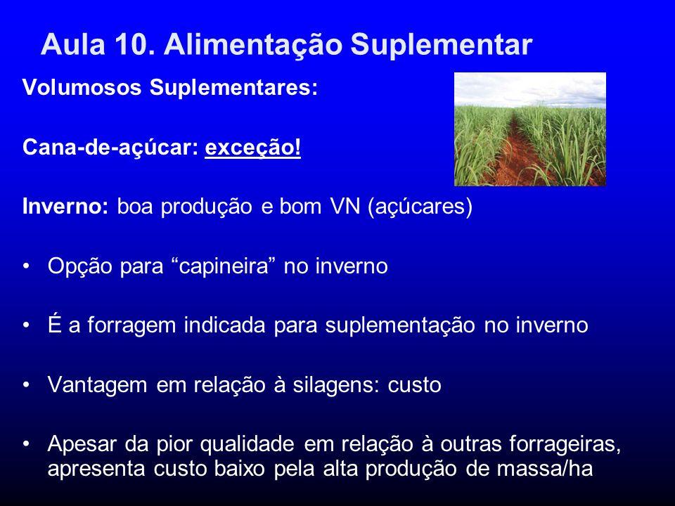 Aula 10. Alimentação Suplementar Volumosos Suplementares: Cana-de-açúcar: exceção! Inverno: boa produção e bom VN (açúcares) Opção para capineira no i