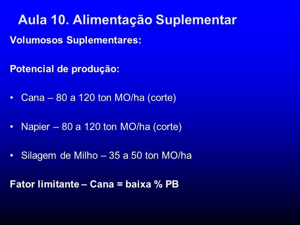 Aula 10. Alimentação Suplementar Volumosos Suplementares: Potencial de produção: Cana – 80 a 120 ton MO/ha (corte) Napier – 80 a 120 ton MO/ha (corte)