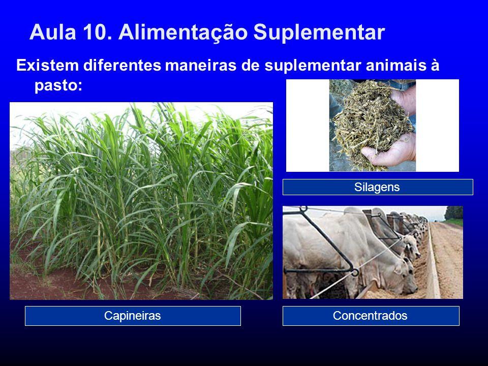 Aula 10. Alimentação Suplementar Existem diferentes maneiras de suplementar animais à pasto: CapineirasConcentrados Silagens