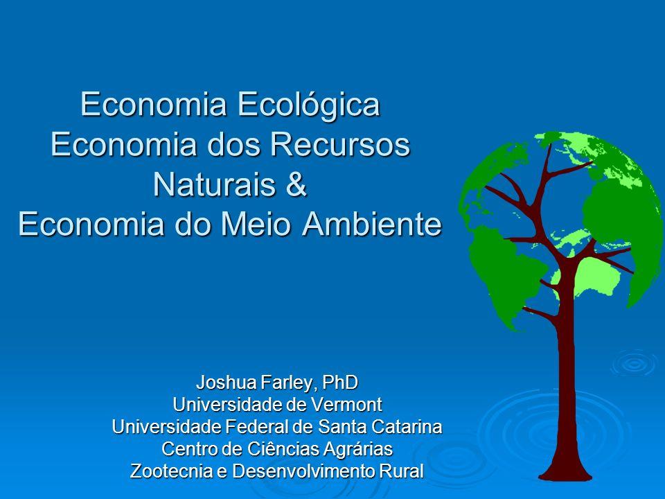 Economia dos Recursos Naturais Trata recursos como matéria primaTrata recursos como matéria prima Objetivo e maximizar valorObjetivo e maximizar valor RenováveisRenováveis Não-renováveisNão-renováveis