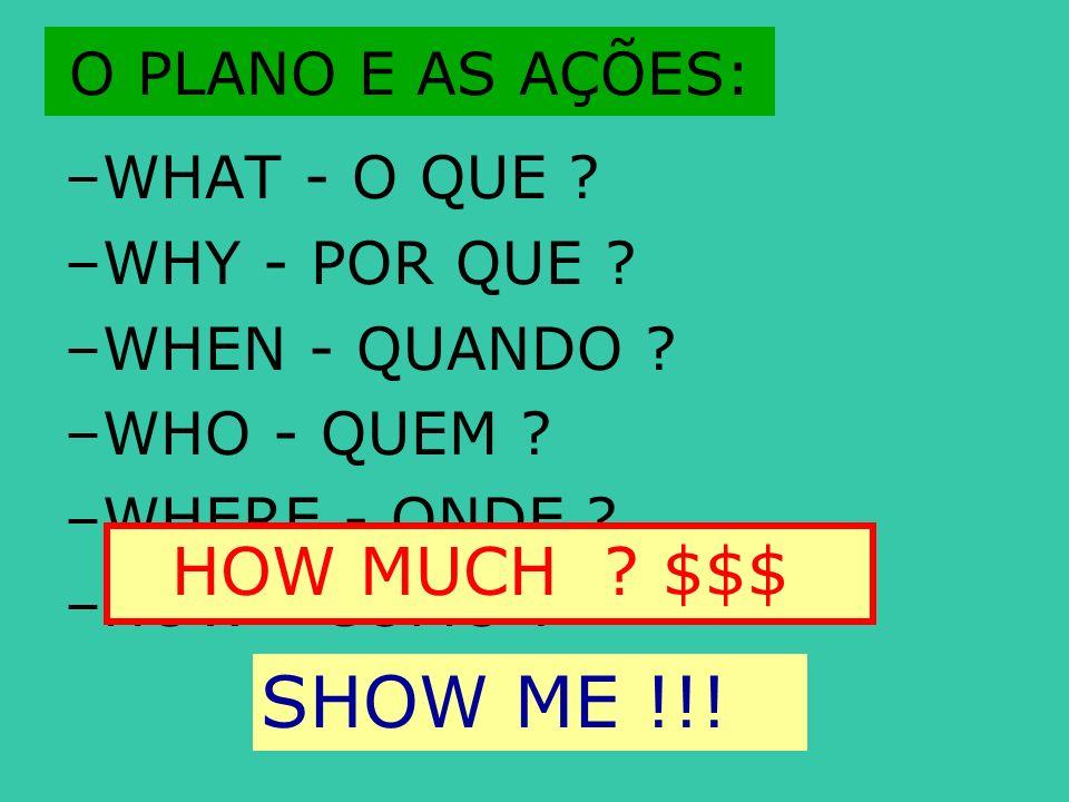O PLANO E AS AÇÕES: –WHAT - O QUE ? –WHY - POR QUE ? –WHEN - QUANDO ? –WHO - QUEM ? –WHERE - ONDE ? –HOW - COMO ? HOW MUCH ? $$$ SHOW ME !!!