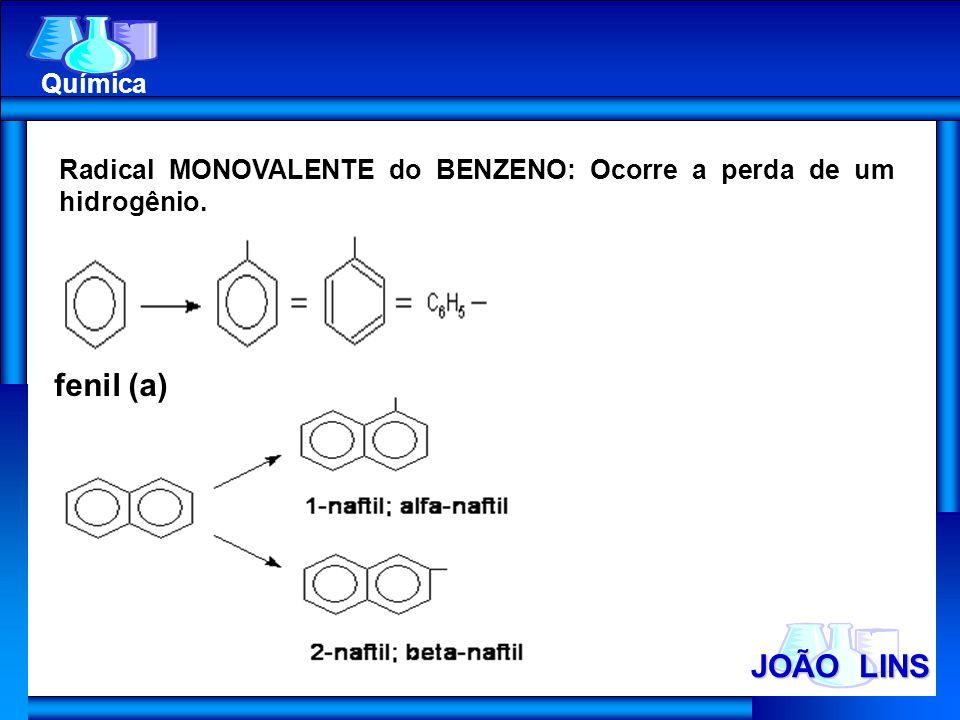 JOÃO LINS Química Radical MONOVALENTE do BENZENO: Ocorre a perda de um hidrogênio. fenil (a)