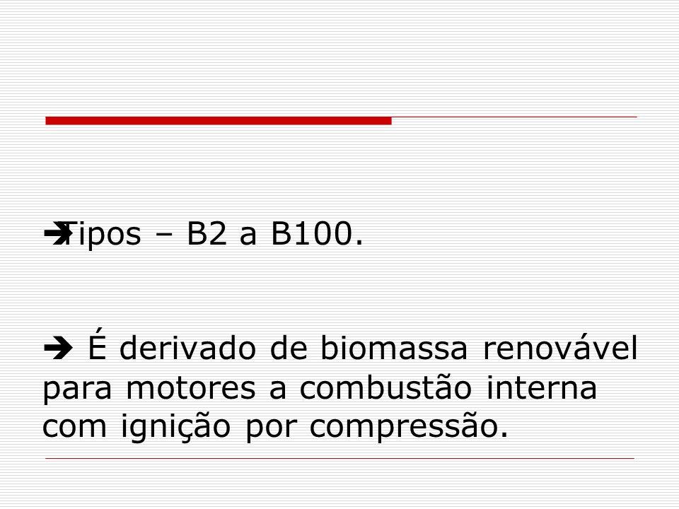 Tipos – B2 a B100. É derivado de biomassa renovável para motores a combustão interna com ignição por compressão.