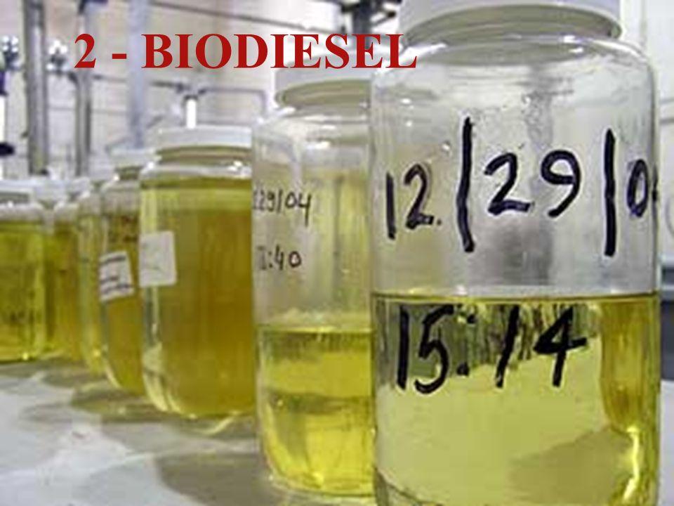 BIODIESEL é um combustível biodegradável derivado de fontes renováveis.